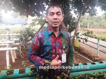 Kepala BPP Lampung, Dadan Sunarsa